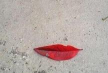 Love it. / by Natalie Corona