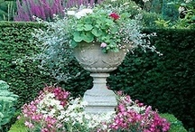 Beautiful Container Gardens / Inspirations for beautifying the concrete jungle