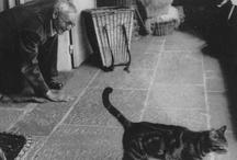 Gli scrittori e i loro gatti
