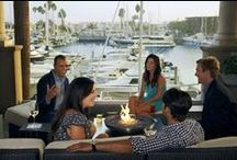 Drinks + Eats / Dining in Marina del Rey = popular happy hours, outdoor patios, acclaimed chefs, local mainstays, famous food trucks & a bustling Farmers Market all at the waterfront's edge.
