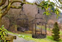 Decor / Bird cages