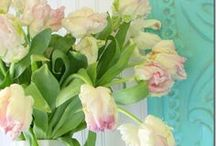 Spring is in the air! / Blooming flowers, singing birds, longer days. Spring is the perfect time to refresh your home!