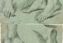 The Body: Feet