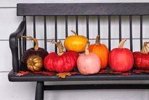 fall festivities / by Meagan Columbia