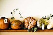 holiday // autumn / by emily // jones design company