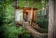 Cabin in the Woods / My dream home