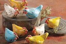 Backyard Chickens  / Chickens, ducks, geese and other fowl... / by D.j. McLendon