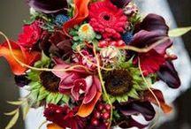 Blogs / Jewelry, fashion, wedding trends