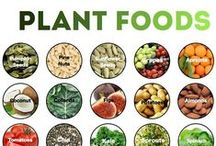 Plant based / Recipes that are meat, dairy, oil, sugar, and nut free or can be easily altered to make them free of those ingredients. / by Denise Norris