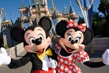 Disney Family Vacations / by FamilyVacationCritic
