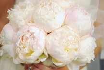 Wedding Flower Fantasy   / Bridal and Bridesmaids Bouquets - Ceremony and Reception Decor