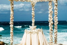 "Destination Wedding / ""The World is your Oyster"" planning a Destination Wedding"