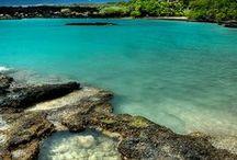 Maui 2014 / by Sonya Stacey-Corona