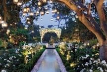 Wedding Ideas / by Jocelyn Cressman