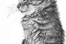 digital stamps / illustrations en noir et blanc à utiliser en scrap