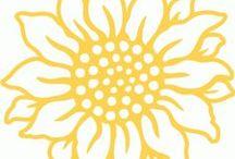 scancut fleurs / découpes