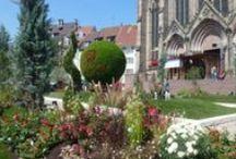 Jardin de ville / En septembre de chaque année, la place de la Réunion à Mulhouse se transforme en un jardin extraordinaire, comme pour prolonger un peu les vacances ! Il y fait bon s'y promener pour profiter de la chaleur des derniers jours d'été.