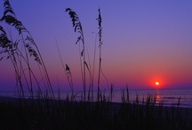 FAVORITE PLACES... ☀Myrtle beach / by Suzanne Cooney