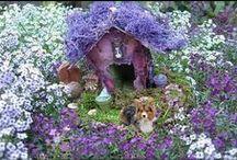 Fairy Gardens / by Joy Denison