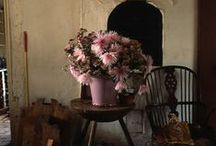Beautifully Rustic (Rustic Chic) / My favorite -  the mix & contrast of earthy/warm, or old and worn plus a bit of bold color.
