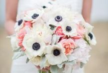 Beautiful Bouquets / Love is blooming / by Wedding Day Diamonds