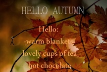 Autumn / by Julie Baumer