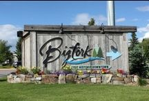 All About Bigfork Montana / So much to see and do...come and see this great town all for yourself!