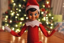 Oliver our Elf / by Danielle Jacobson