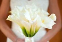 Wedding Ideas / by Jessica Thweatt
