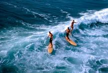 Surf / by Margaret Long