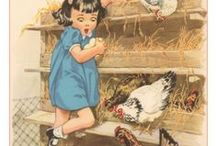 HOME: Chicken Raising / All about raising chickens!
