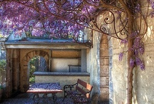 ~ Garden inspirations ~ / by Tamika Robis Gordon