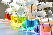 Rainbow Weddings / Rainbow Weddings Pinterest Board. Few LGBT couples can resist having at least one rainbow accent at their wedding! Wedding ideas based on the gay pride flag - some more subtle than others.  / by EnGAYged Weddings