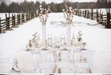 Winter Wedding / by B Wedding Invitations