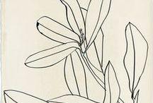 Illustration |Illustratives / All kind of illustration. Floral. Funny. Stylish. Childish.