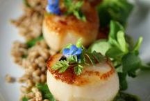 Scallops / Scallop Recipes