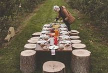 Dinner party table ideas / Inspiration and easy ideas for dinner party centerpieces and flower arrangements that go beyond the standard / by Jennifer Howze