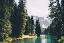 ❧ rustic ❧ / fresh air, rustic scenes, trees and more trees