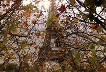 The Eiffel Tower / by Jane Ellis