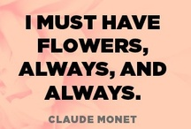 SAY IT WITH  FLOWERS / I must have flowers, always, and always.   Claude Monet / by Debbie Probst