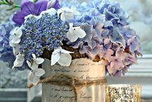 Florals / by Nancy Feinberg