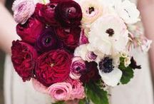Wedding Florals / Beautiful blossoms and blooms to accompany you on your walk down the aisle.