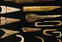 Ancient Projectile Points and Tools of Early Man / I have always been fascinated by arrowheads (points) and axe heads found in nearby farmer's fields - evidence of Woodland  Indians. / by Violet Shimer Love