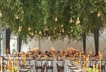 Wedding Reception Decor / All the big and little details that make the wedding reception a party to remember. Florals, centerpieces, table numbers, table settings, and personal touches! / by Absolutely IN! Events