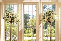 Windows & Doors / Beautiful Windows & Doors