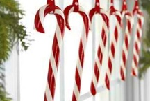 Holiday Decorations / by Sarah Domina