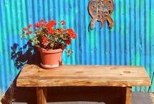 Fun Backyard / Gardening