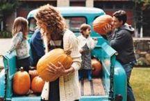 Halloween Fun / by DLP Interiors