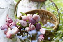 Easter Ideas / by DLP Interiors