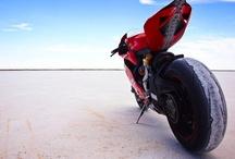 Fantastic Rides